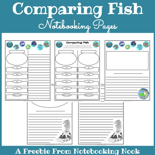 Freebie: Fish Notebooking Pages